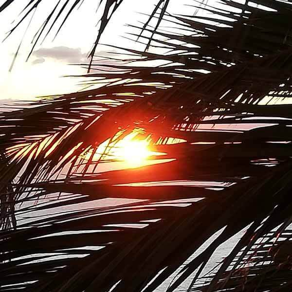 Foto vom Sonnenuntergang für Yoga-Woche